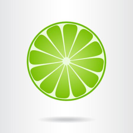 Lime slice. Vector illustration.