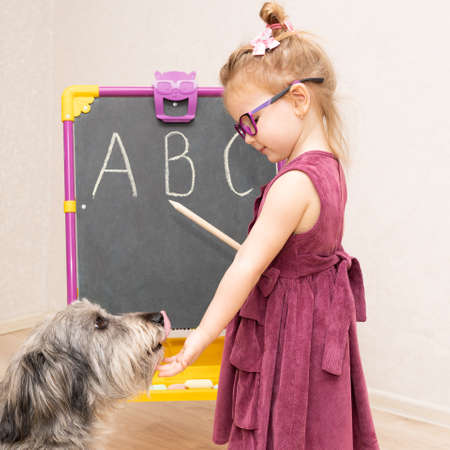 little girl teacher plays with her dog in school and shows her English letters. She praises and pats her. The dog licks her hand