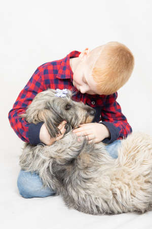 a shaggy mongrel dog lies in the boys arms. The boy hugs his pet and talks, caresses, strokes