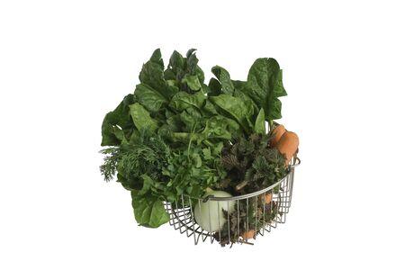 Fresh vegetable for ukrainian traditional spring season soup  photo