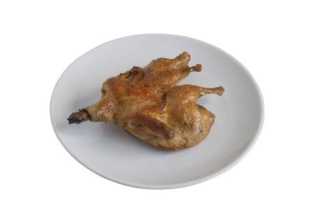 Roasted quail on white plate. Isolated on white background