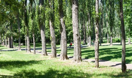 One from many parks in capital city of Ukraine at June Stock Photo