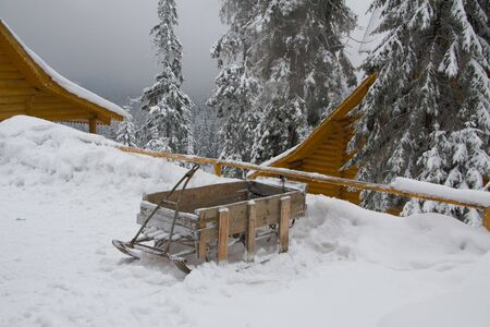 ethnographic: Old style sledge near chalet, on background  snowcaped pine and fog