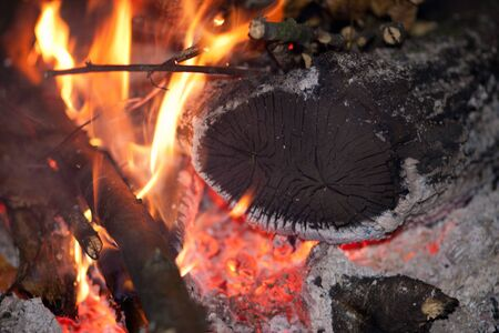 Logs and firewood burning in the fire Stock Photo