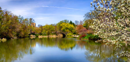 a spring view of a scenic lake in central park in new york Banque d'images