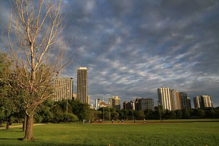 View of the Chicago skyline from the Formal Gardens park area in Grant Park, downtown Chicago, in the Loop. Stock Photo