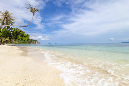 Beautiful tropical delightful extraordinary bright paradise landscape, white sand and palm trees, Stock fotó
