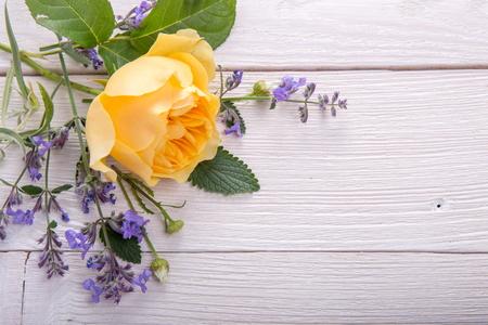 Geel nam op witte houten achtergrond toe. David Austin Rose Golden Celebration