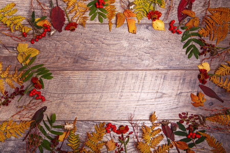 colorful leaves and autumn flowers on wooden background