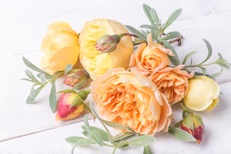 Bouquet of English rose. Greeting card, invitation in light pastel colors. Stock Photo