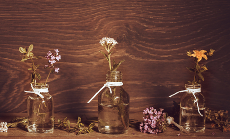 A bottle of essential oil with herbs and medicinal plants, St. Johns wort, yarrow, thyme, set on an old wooden background. Cooking, alternative medicine, massage, aromatherapy concept,
