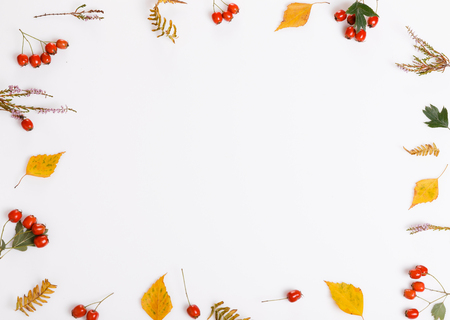 Autumn composition. Frame made of autumn leaves, berries, flowers, hawthorn, heather on white background.