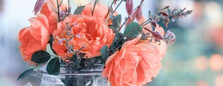 Beautiful roses flowers. Bouquet of roses in a glass jar.