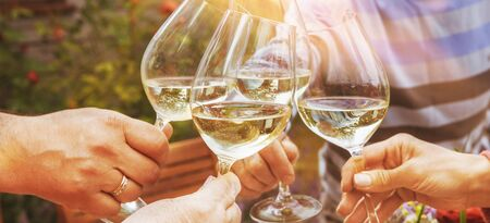 Family of different ages people cheerfully celebrate outdoors with glasses of white wine, proclaim toast Reklamní fotografie