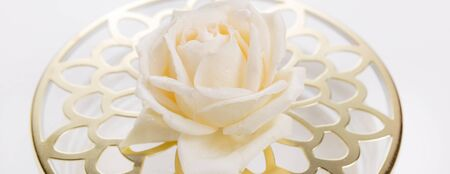 Blooming white pink roses and lavender beatiful bouquet close up. Фото со стока