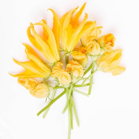 Fresh green zucchini flower and leaves on white background. 免版税图像