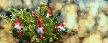 Christmas banner, Christmas gnomes on the tree, sparkles, shining fairytale background.