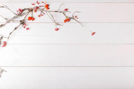 Weihnachts-, Neujahrs- oder Herbsthintergrund, flache Zusammensetzung von natürlichen Weihnachtsornamenten und Tannenzweigen, Beeren, Hagebutten und Winterzweigen Standard-Bild