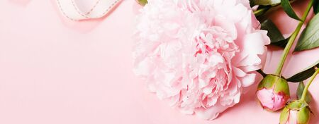 Romantic banner, delicate white peonies flowers close-up. Fragrant pink petals, abstract romance background, pastel and soft flower card Stock fotó