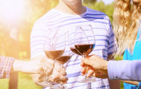 Family of different ages people cheerfully celebrate outdoors with glasses of red wine, proclaim toast People having dinner in a home garden in summer sunlight