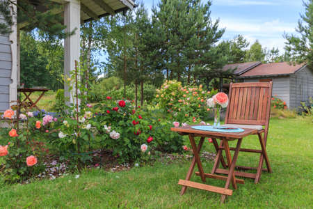 Romantic sitting area in the rose garden, round wooden table and chairs near the large flowering bushes of English roses.