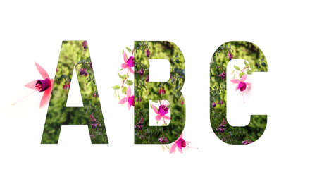 Floral alphabet, fuchsia, letters A B C floral, concept of spring, summer
