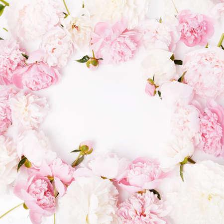 Romantic frame, delicate pink peonies flowers close-up. Fragrant pink petals Zdjęcie Seryjne