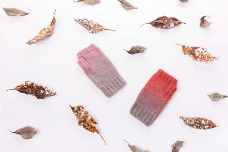 Dry autumn leaves and woolen knitted mittens gray and pink on a white background.