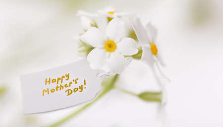 White Label with Happy Mothers Day and delicate white flowers