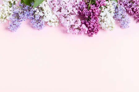 Flowers composition. Frame made of lilac flowers on pink background. Flat lay, top view, copy space