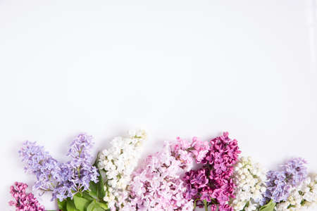Flowers composition. Frame made of lilac flowers on white background. Flat lay, top view, copy space 写真素材