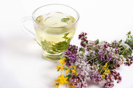 Glass cup of herbal tea with dry oregano flowers on white table background with copy space. 写真素材