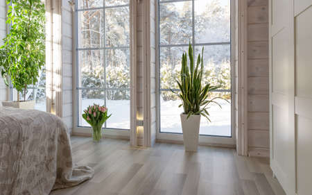 Bright interior of the room in a wooden house with a large window overlooking the winter courtyard. Winter landscape in white window. House plant Sansevieria trifasciata and a bouquet of pink tulips