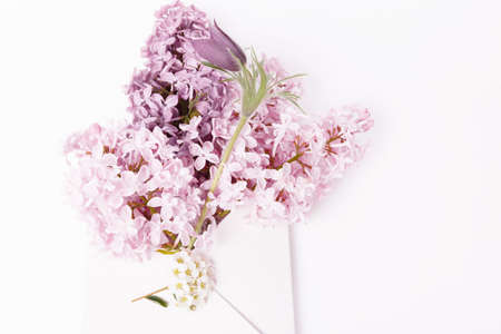 Lilac bouquet in a pink envelope, spring greetings on white background. Flat lay, top view