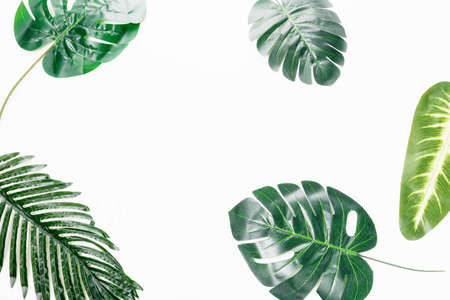 Flat lay tropical leaves on white background with blank space for text. Top view travel or vacation concept. 免版税图像
