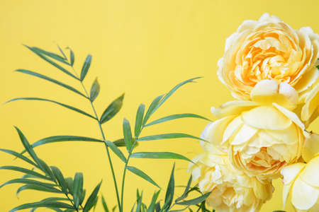Color Year 2021. Festive flower rose and tropical plant composition on yellow background.
