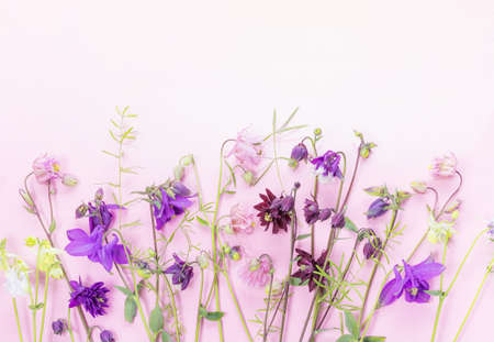 Spring frame of small flowers, floral arrangement on pink backgrouns