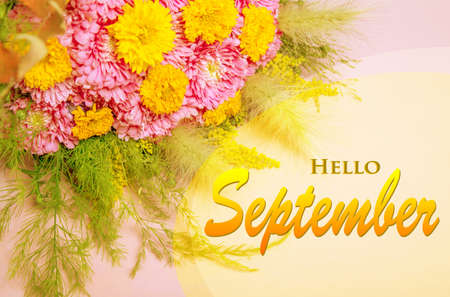 Hello September wallpaper, autumn background with yellow pink flowers 免版税图像