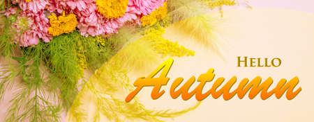 Hello Autumn wallpaper, autumn background with yellow pink flowers