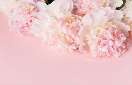 Festive flower pink peony composition on the pink background. Overhead top view, flat lay. Copy space. 免版税图像