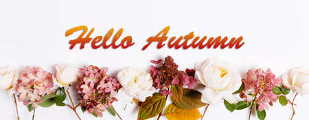 Hello Autumn wallpaper, autumn background with burgundy pink rose and hydrangea