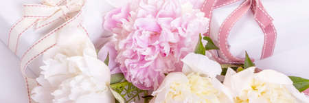 Romantic card, delicate white pink peonies flowers and gift, heart shaped ribbons.