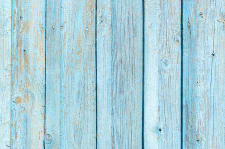 crannied: The texture of the old wooden fence with a cracked blue paint