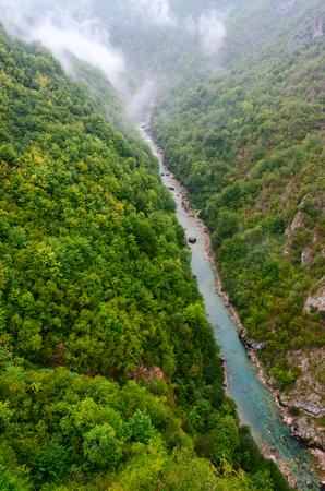 tara: Top view of canyon of Tara river in rainy day, Montenegro