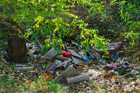 Dump in forest. Ecology, pollution of environment Stock Photo
