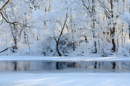 Beautiful winter landscape. Trees in hoarfrost on river bank in January