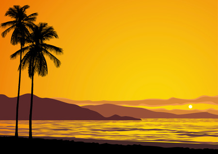 vector illustration of a tropical ocean sunset