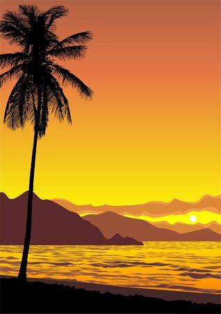vector illustration d'un coucher de soleil oc�an tropical Illustration
