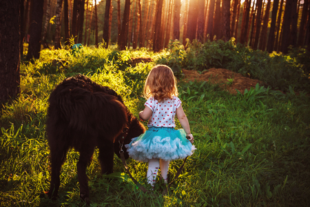 little girl walks in the woods with the dog Newfoundland