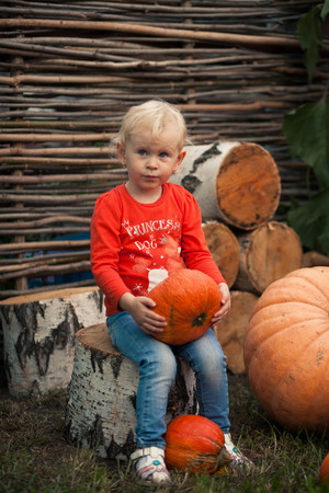 Girl sitting on a stump, holding a pumpkin on a background of birch stumps and sunflower